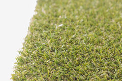 Green grass ,white background. Royalty Free Stock Image