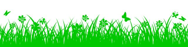 Green grass on white background with flowers. Vector Royalty Free Stock Photo
