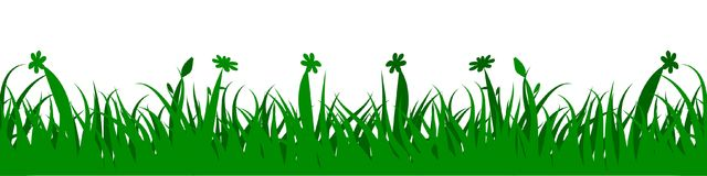 Green grass on white background with flowers - vector. Green grass on white background with flowers - stock vector Royalty Free Stock Photography