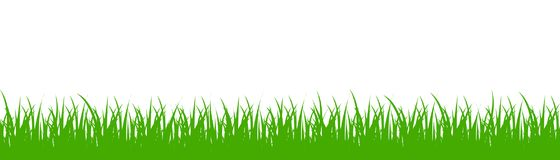 Green grass on white background - vector. Green grass on white background - stock vector Stock Photography