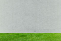 Green grass with white concrete Stock Photography