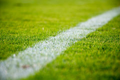 Green Grass With White Line Paint Royalty Free Stock Image