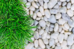 Green grass with white stone nature background Stock Photo