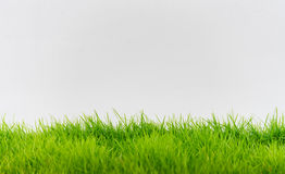 Green grass and white wall, abstract texture background. Stock Photos