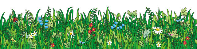 Green grass, wild flowers stock illustration
