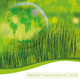 Green grass wjth planet Earth in the bubble Royalty Free Stock Image
