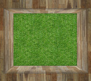 Green grass in Wood Box Royalty Free Stock Photos