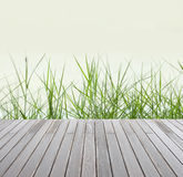 Green grass  and wood floor. Fresh spring green grass  and wood floor Stock Photo