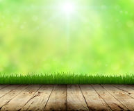 Green grass and wood floor spring season Royalty Free Stock Photos
