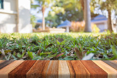 Green Grass on wood table blurred background Stock Photo