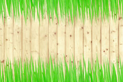 Green grass and wooden wall Stock Photo