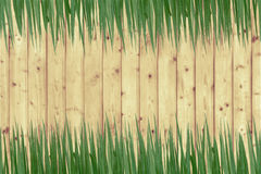 Green grass and wooden wall Royalty Free Stock Photography