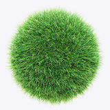 Green grass, world made with grass, environment Stock Photography