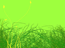 Green Grass and Yellow Flowers Illustration Stock Photo