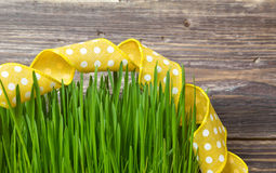Green grass with yellow ribbon Royalty Free Stock Images