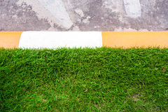 Green grass in the yellow / white color concrete border beside r. Oad stock photography