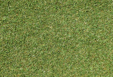 Green grassed lawn texture background Stock Photography
