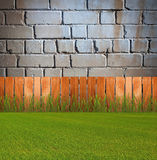 Green grassin garden Royalty Free Stock Image