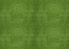 Green grassland. Outdoor green grassland texture, lawn land Stock Photography