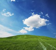 Green grassland Stock Images