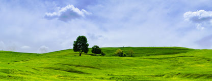 Green grassland and clouds. Blue sky, nature Stock Images