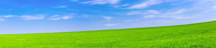Green grassland and clouds. Summer Stock Images