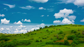 Green grassland and clouds. Blue sky, nature Stock Image