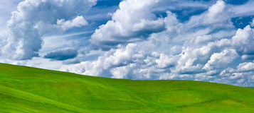 Green grassland and clouds. Blue sky, nature Stock Photos