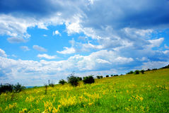 Green grassland and clouds royalty free stock photos