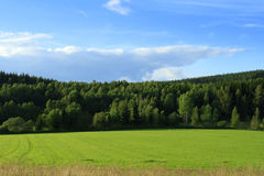 Green grassland and forest Stock Photo