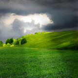 Green grassland and storm cloud Stock Image