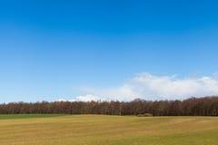 Green Grassy Field under Bright Blue Sky Stock Photography