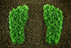 Green grassy footprints. Showing the eco friendly way of life Royalty Free Stock Images