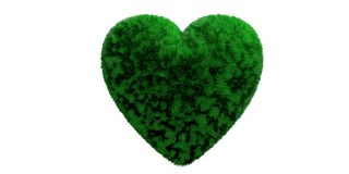 Green grassy hair heart isolated cut out against white background. 3d illustration stock photography