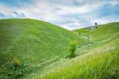 Green grassy hills Stock Photography