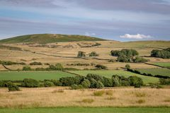 Green and grassy pastures in the Lake District National Park, En. Gland stock photos