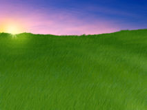 Green grassy slope Stock Images