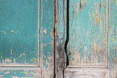 Green gray paint mottled wooden doors Stock Photo