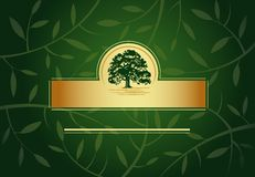 Green Greeting card Stock Images