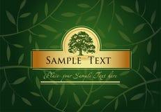 Green Greeting card Royalty Free Stock Photo