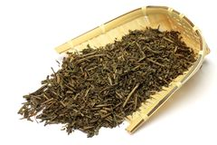 green grillad tea Fotografering för Bildbyråer