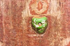 Green grip. Green hand grip of a wooden climb wall royalty free stock photos