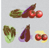 Green grocery. Colourfull individual & group of china cabbage, tomatoes, eggplants Stock Photos