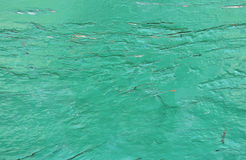 Green grunge background Royalty Free Stock Image