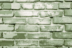 Green grunge brick wall Royalty Free Stock Photos