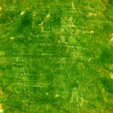 Green grunge painted watercolor paper texture Stock Image