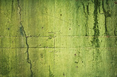 Green Grunge Wall Stock Image