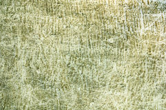 Green grunge wall Stock Photography