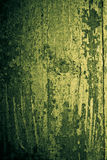 Green grunge wood Stock Image