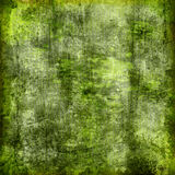 Green  grungy background Royalty Free Stock Images